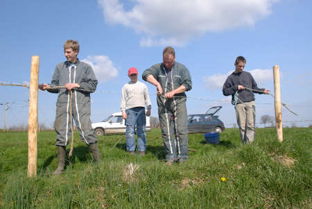Normandy, France, April 2010. Repair of fences of a meadow by a farmer with his son and his father. Family assistance. Grubbing-up of old and plantation of new wooden stake. Editorial