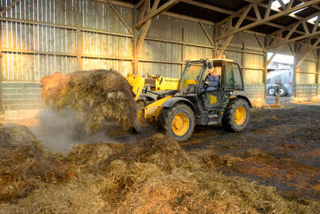 Normandy, France, February 2010. Dredging manure of a stall in a cattle farm. Then spreading of manure on a field with a manure spreader