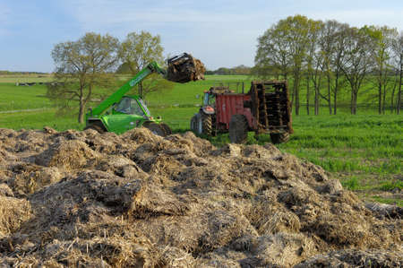 Normandy, France, JApril 2016. Spreading of manure on a field with a manure spreader. Dung hill Editorial