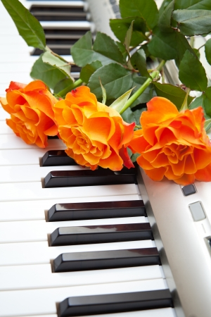 Electronic piano with orange rose flower photo