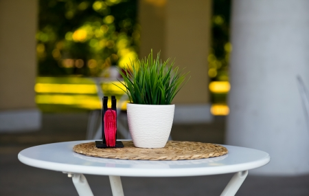 A table in an outdoor cafe with a grass pot on a table photo