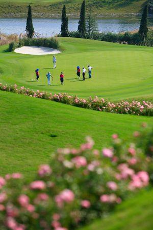 caddie: golf course05