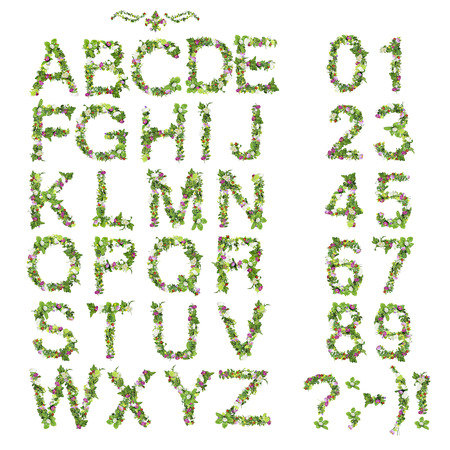 봄 여름 알파벳 및 흰색 배경에 고립 된 꽃으로 만든 번호