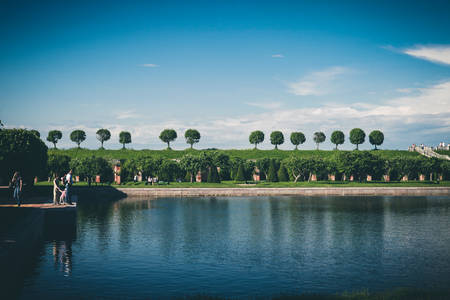 petergof: Panorama of three trees on the background of blue sky in Peterhof