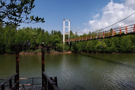 Thung Kha Bay Mangrove Forest. Wooden walkway suspension bridge in forest. Chumphon, Thailand For nature walks to study coastal plants and animals. Stock Photo