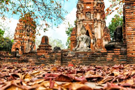 Wat Mahathat in Buddhist temple complex in Ayutthaya near Bangkok. Thailand, statue of Buddha 版權商用圖片