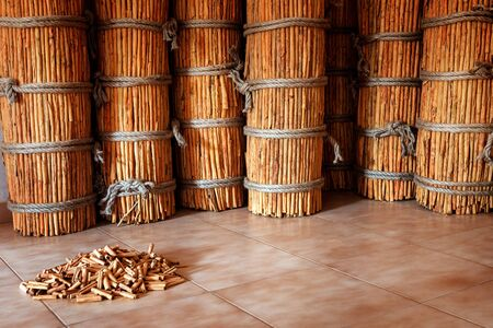 tied in: many sheaves, bundles tied long bunch sticks of cinnamon collected for shipping in the factory warehouse