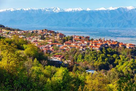 매직보기 Signagi 및 Alazani 밸리 석양에. 조지아의 와인 재배 지역의 심장부. 옥상에서보기