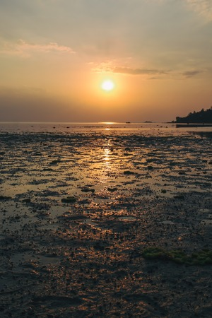 Wok Tum, Hin Kong, Plai Lem beach area of wetland with mangrove forest at Koh Pha ngan island beachfront sea shore area at low tide on sunset Gulf of Thailand. Locals harves crabs and seafood Stock Photo