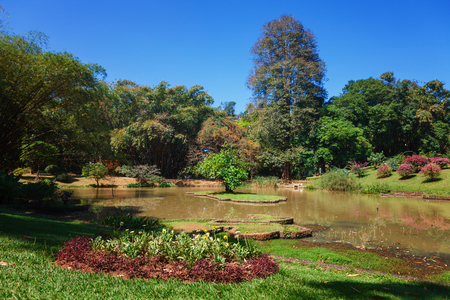 Panoramic view of Royal Botanical King Gardens, Peradeniya, Sri Lanka, locates near Kandy. Alley, Lake and river Reklamní fotografie