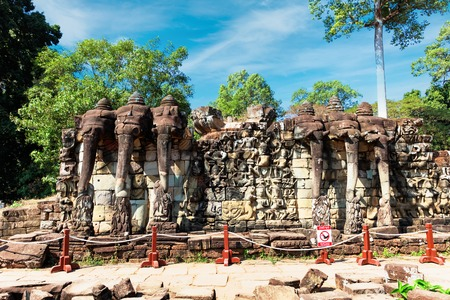 Procession of elephants on the Elephant Terrace, Angkor Thom, Cambodia, Siem Reap