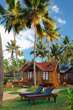 Varkala, India - February 09, 2016: big luxury wooden bungalow street in the tropical resort, palm tree alley, idylic place in India