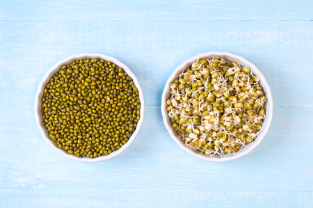 Mung beans dried and sprouted in a bowls on a blue wooden background Stock Photo