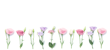 Floral frame or border of eustoma flowers isolated on white background.