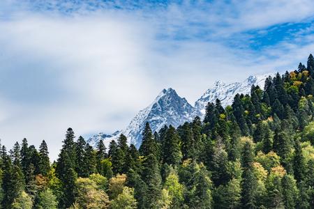 Mountain peak Dombay. National Park, Russia, Karachay-Cherkessia. Green coniferous forest. Stock Photo