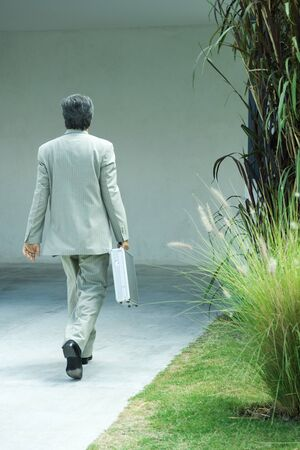 Businessman carrying briefcase, rear view, full length LANG_EVOIMAGES