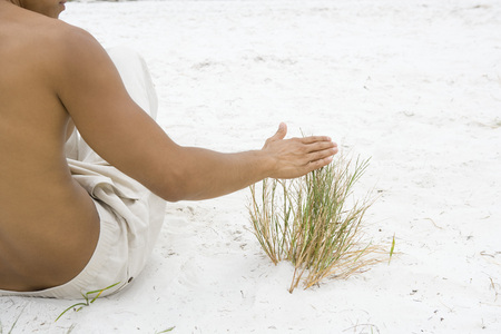 Man sitting in sand touching dune grass, cropped rear view