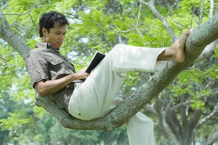 Man sitting in tree, reading book LANG_EVOIMAGES