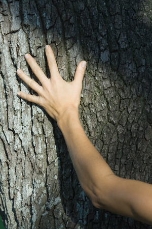 Woman touching tree trunk, cropped LANG_EVOIMAGES