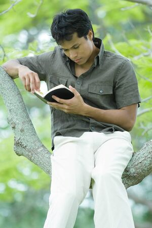 turning the page: Man sitting in tree, reading book LANG_EVOIMAGES