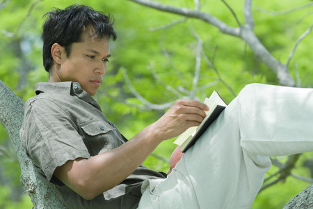 Man resting on tree branch, reading book