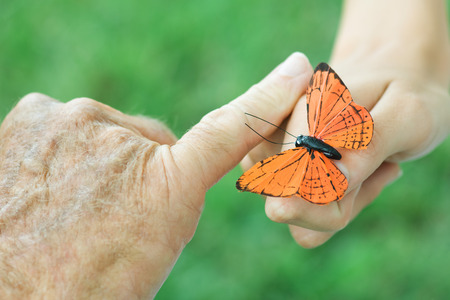 Hands of child and elderly person with butterfly, close-up