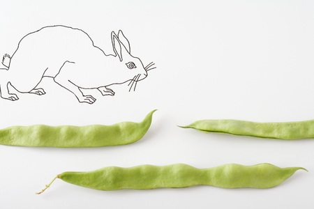 Drawing of rabbit walking across fresh pea pods