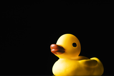 Rubber duck, on black background