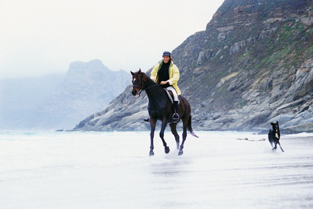 Man riding horse on beach LANG_EVOIMAGES
