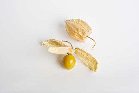 Cape gooseberry (Physalis peruviana) LANG_EVOIMAGES