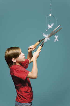 Boy using hedge clippers to cut down butterfly mobile LANG_EVOIMAGES