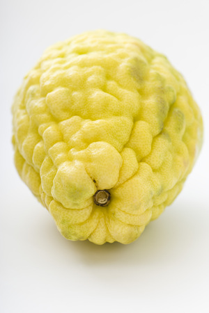 citrons: Balady citron