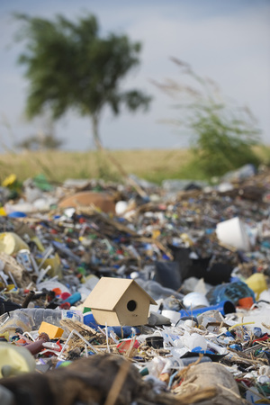 Birdhouse on ground surrounded by landfill trash