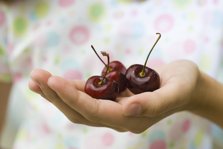 Childs cupped hand holding cherries LANG_EVOIMAGES