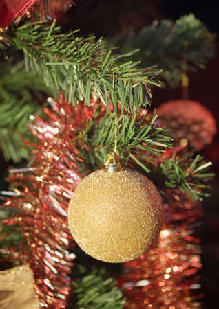 Christmas decoration on tree, close-up LANG_EVOIMAGES