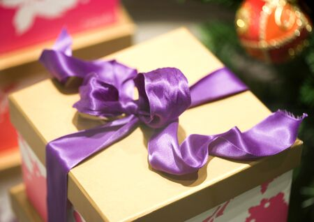 purples: Christmas package LANG_EVOIMAGES