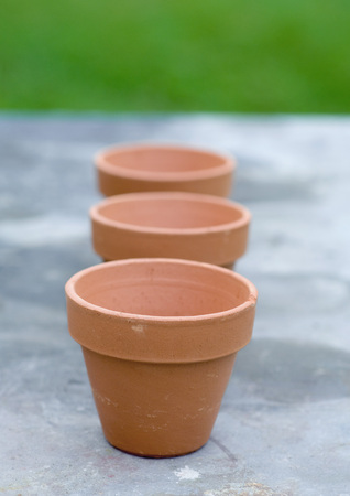 Three terracotta pots
