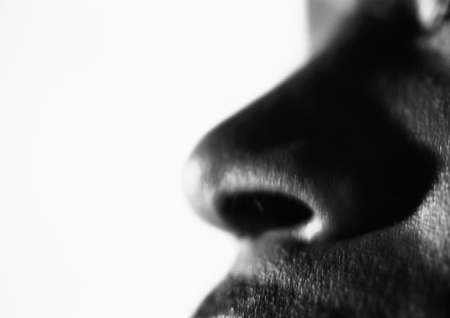 stinks: Mans nose, close up, black and white LANG_EVOIMAGES