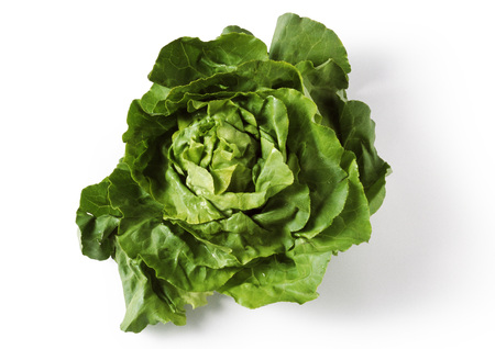 Head of green lettuce, top view, close-up