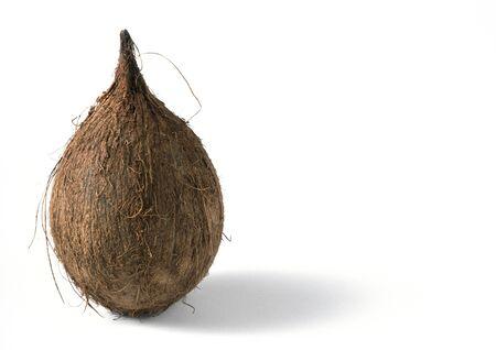 cuerpo entero: Coconut