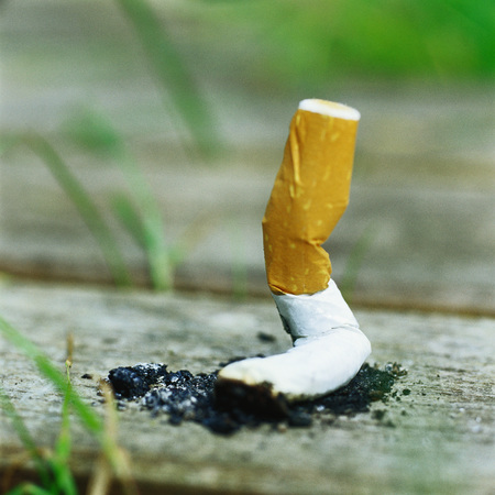 Snuffed out cigarette butt on wooden plank LANG_EVOIMAGES