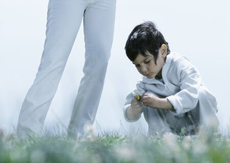 Little boy squatting down on grass looking at flower, next to womans legs