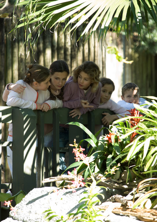 Group of children looking over railing in wildlife park
