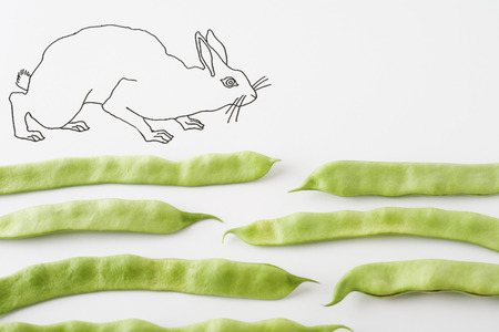 Rabbit walking on fresh pea pods