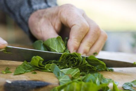 Chopping chard greens LANG_EVOIMAGES
