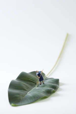 Miniature cleaning lady sweeping leaf LANG_EVOIMAGES