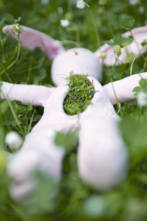 Stuffed rabbit lying on the ground with grass growing out of its chest