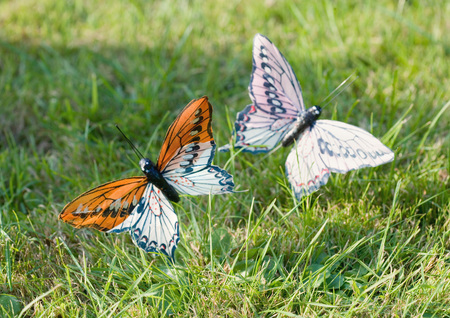 whimsy: Fake butterflies in grass