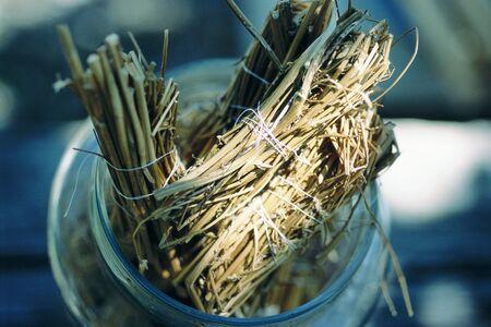 holistic view: Dried fennel stalk