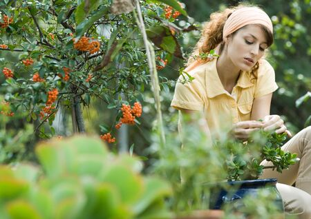 Young woman in garden, caring for jade plant